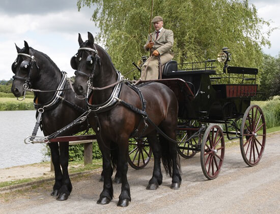 Horse Drawn Carriage Tour London