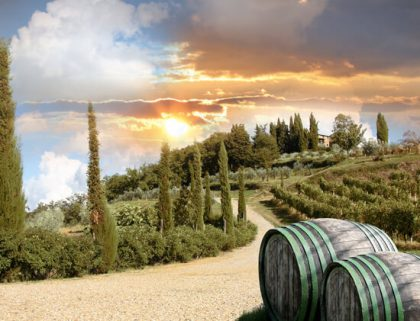 italy wine break