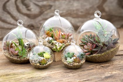 Terrarium Globes as Christmas Gifts for Grandma