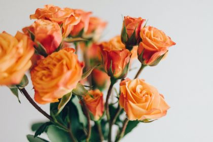 Orange rose bouquet for 4th wedding anniversary
