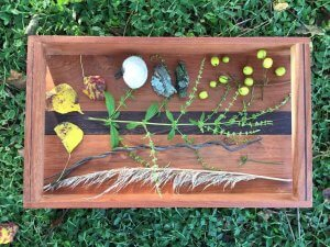 Montessori Nature Sensory Tray