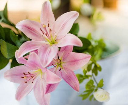 Lily for 30th wedding anniversary