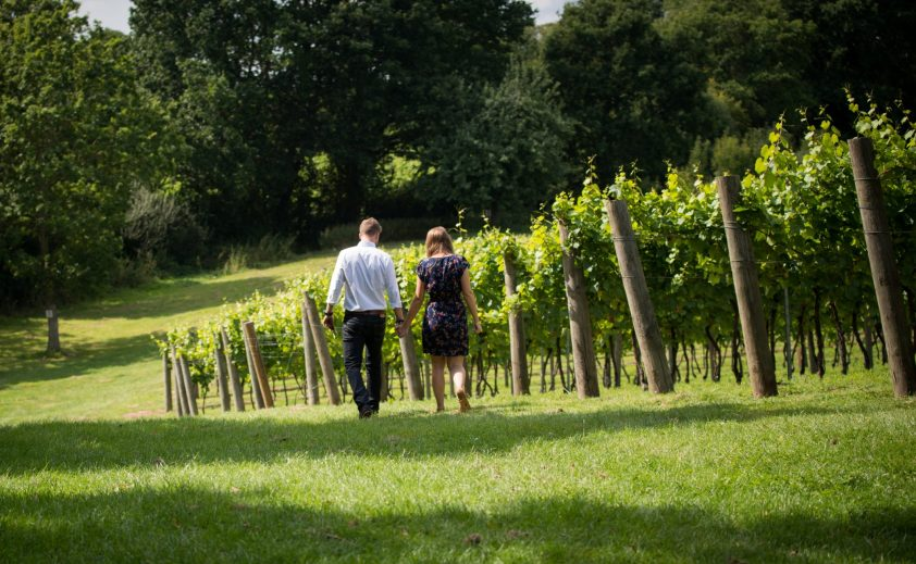 Couple holding hands walking through vineyard