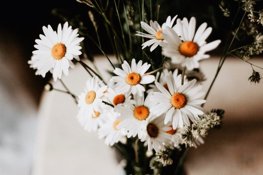 Bouquet of daisies for 5th Wedding Anniversary