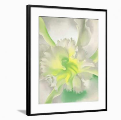 Framed An Orchid by Georgia O'Keeffe