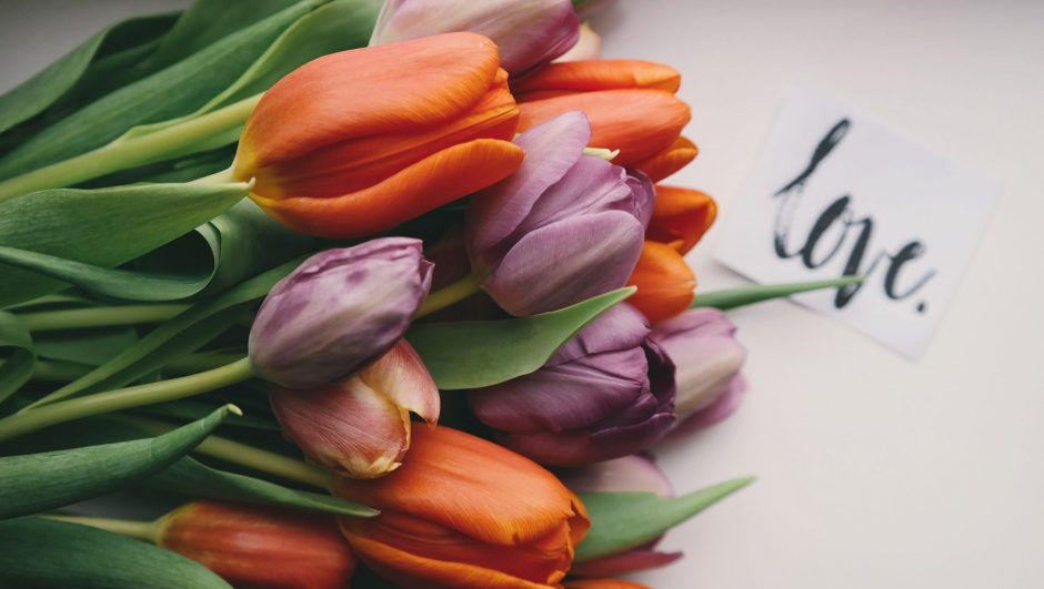 Tulips for 11th anniversary gift