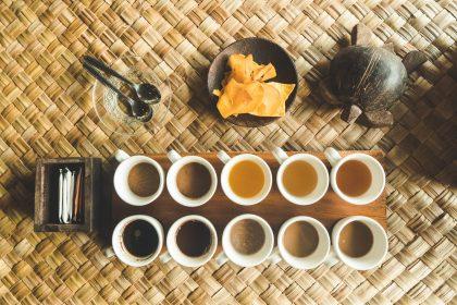 Coffee tasting in Costa Rica