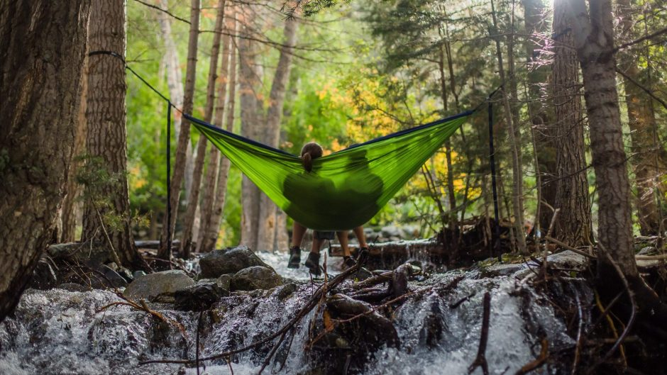 Couple on hammock in forest