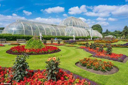 Flowers in bloom at Kew Gardens