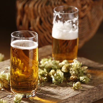 Beer making experience