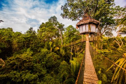 Treehouse Lodge in the Peruvian Amazon