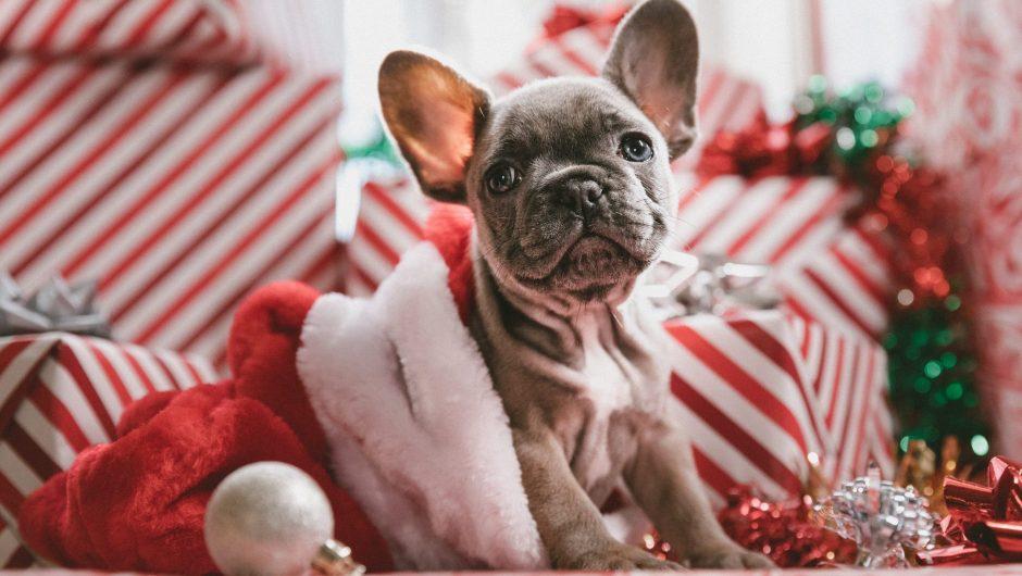 Best Secret Santa Gifts Under £10