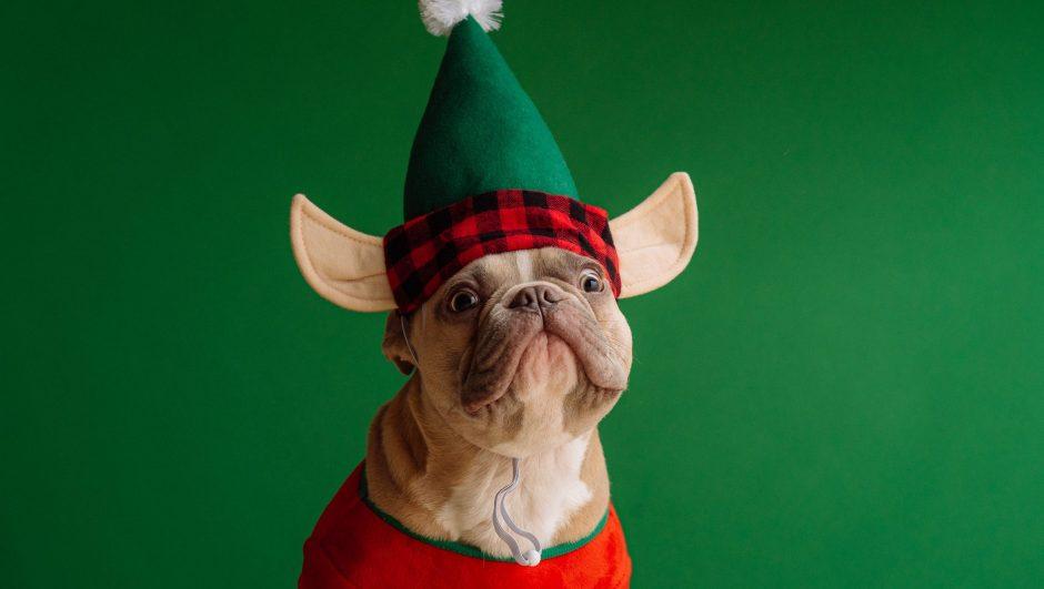Funny Secret Santa Gifts 2020