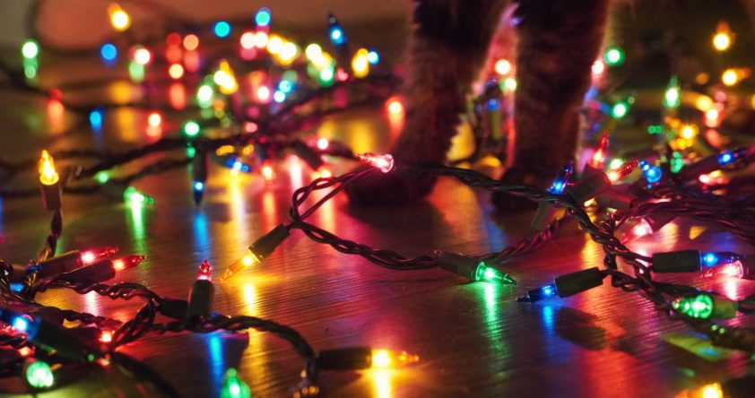 Brightly lit LED Christmas lights