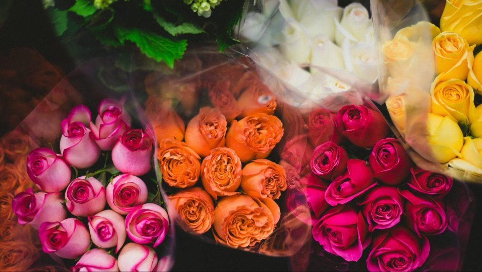 colourful roses in pink, yellow, and white in bouquets