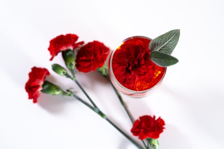Red carnations symbolise love