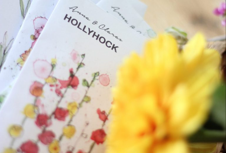 A manual on growing hollyhock