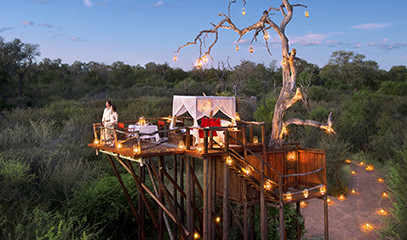 Treetop Penthouse: Romantic South African Getaway for Two with Safari Trek