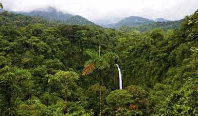 Rainforests of Costa Rica: Luxury Eco-Lodge Break for Two