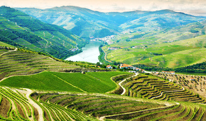Journey to Douro: Four Night Port Wine Break for Two in Oporto and the Douro Valley