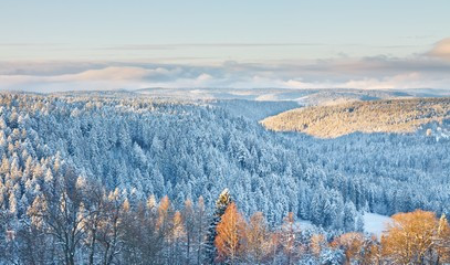German Culinary Break for Two: Black Forest Escape with Three Michelin Star Dining