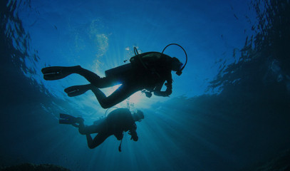 Say I do: Dive For Your Own Diamond In South Africa