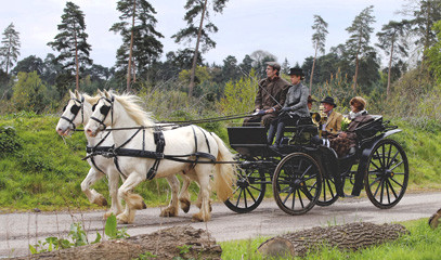 Dreams Come True: Countryside Carriage Ride with Champagne & Picnic for Two