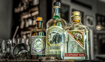 Old English Spirit: Gin Tasting with Cocktails and Canapés for Two at The Hyde Bar