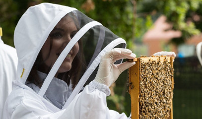 Beer Buzz: Urban Beekeeping And Craft Beer Tasting For Two With Hiver