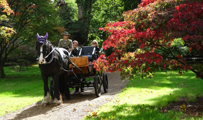 Ride Like Royalty: Horse Drawn Carriage Ride & Afternoon Tea For Two With Ascot Carriages And Oakley Court