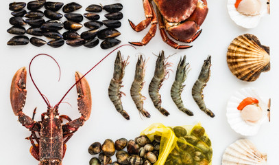 Tip the Scales: Fantastic Fish For One At Cookery School At Little Portland Street