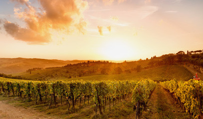Wine Country Luxury: Napa Valley Wine And Gastronomy Getaway For Two
