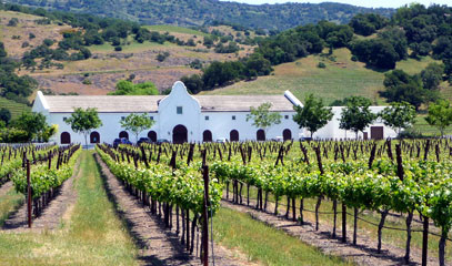 Vineyard Valley: Napa Valley Two Night Escape for Two