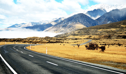 New Zealand Driving Break
