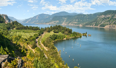 Artisanal Wine: Two Night Wine Getaway for Two in Oregon