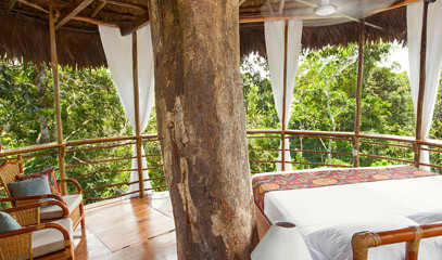 Welcome to the Jungle: Treehouse Retreat for Two in the Amazon