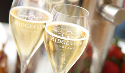 Sussex's Sparkling Success: Winery Tour and Tasting for two at Ridgeview