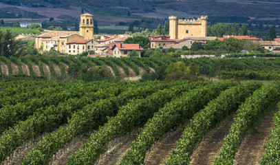 Vino Riojana: Three Night Spanish Wine Getaway and Three Michelin-starred Lunch for Two