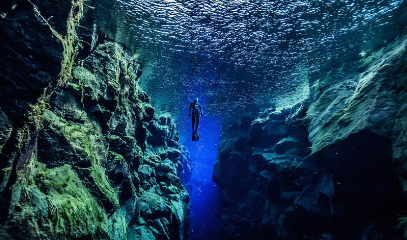 Arctic Adventure: Intercontinental Snorkelling And Whale Watching In Iceland For Two